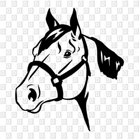 Pferdekopf Kleber Sticker Kleber für Auto Autoaufkleber