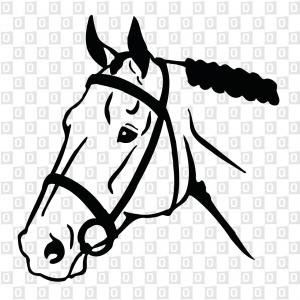 Pferdekleber Pferdekopfkleber Kleber für ans Auto