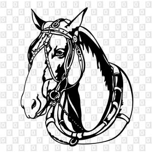 Kutschenpferd Pferdeaufkleber Autoaufkleber Kleber für die Heckscheibe