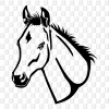 Fohlen Kleber Pferdekopf Sticker Selbstklebefolie